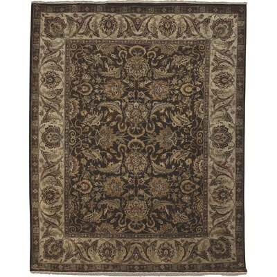Isidore Chocolate/Ivory Area Rug Rug Size: Rectangle 6 x 9