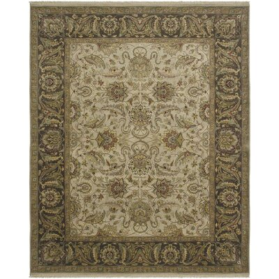 Isidore Ivory/Chocolate Area Rug Rug Size: Rectangle 8 x 10