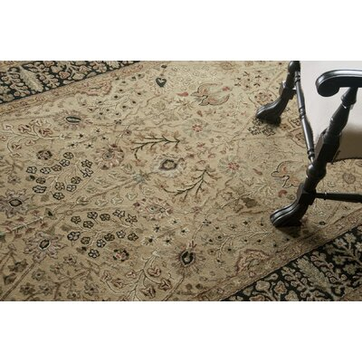 Cloverdales Gold/Ebony Area Rug Rug Size: Runner 26 x 86