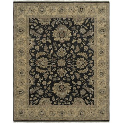 Antiquity Pompeii Ebony/Gold Area Rug Rug Size: 2 x 3