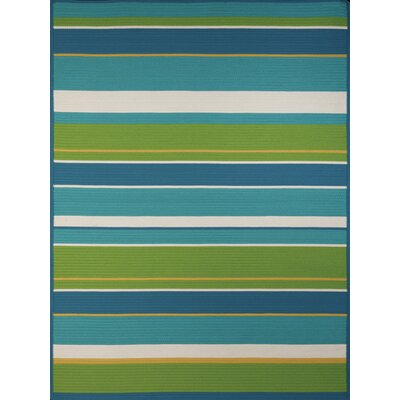 Morro Bay Aqua Indoor/Outdoor Area Rug Rug Size: 77 x 97