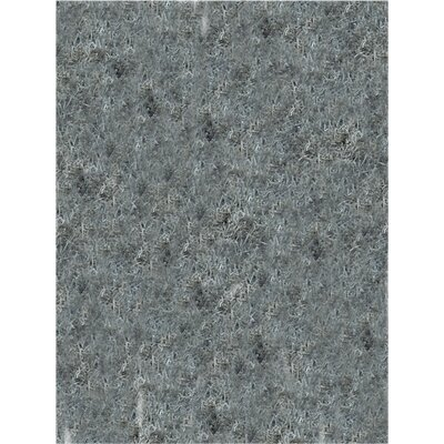 Elements Silver Stratus Area Rug Rug Size: 2 x 3