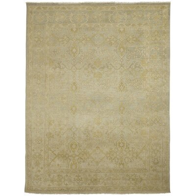 Anatolia Patara Light Green Area Rug Rug Size: 8 x 10
