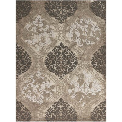 Kanoka Hand-Tufted Brown Area Rug Rug Size: 2' x 3'