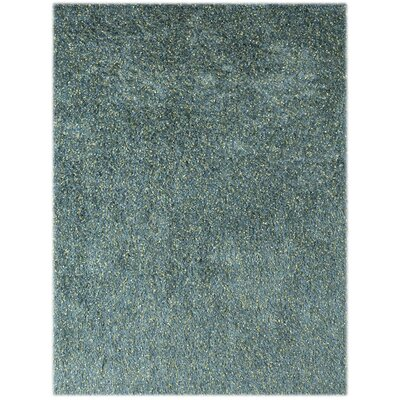 Bright Aqua Area Rug Rug Size: Rectangle 2 x 3