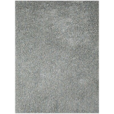 Bright Sky Blue Area Rug Rug Size: Rectangle 76 x 96