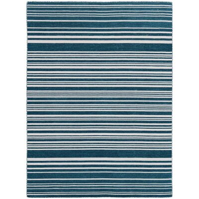 Cavanaugh Flat-Weave Blue Area Rug Rug Size: Rectangle 2 x 3
