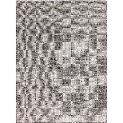 Amber Hand-Tufted Brown Area Rug Rug Size: 4 x 6