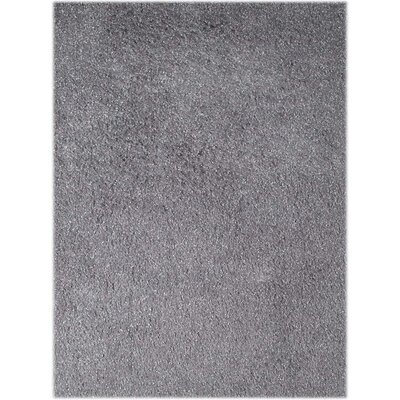 Bright Silver Area Rug Rug Size: Rectangle 36 x 56