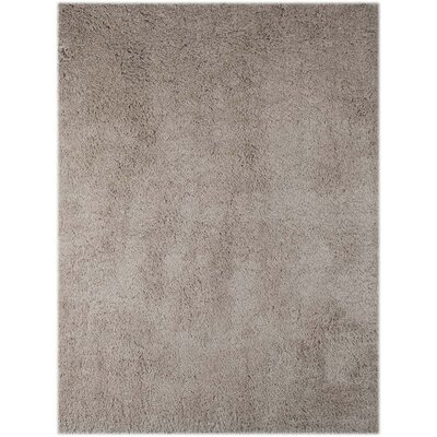 Chaves Champagne Area Rug Rug Size: Rectangle 8 x 11