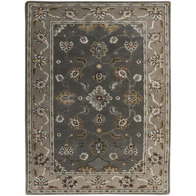 Pawling Modern & Contemporary Hand-Tufted Gray Area Rug Rug Size: Rectangle 76 x 96
