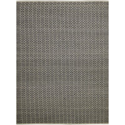 Bertrand Hand-Woven Charcoal Area Rug Rug Size: Rectangle 8 x 10