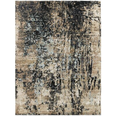 Blanchard Hand-Knotted Charcoal Area Rug Rug Size: Rectangle 9 x 12