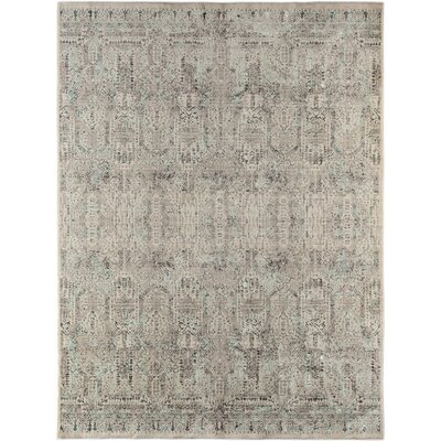 Cadence Transitional Blue Area Rug Rug Size: 5 3 x 7 7