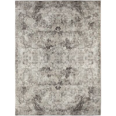 Cadence Transitional Gray Area Rug Rug Size: Rectangle 2 x 3 3