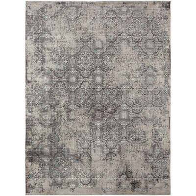 Cadence Transitional Charcoal Area Rug Rug Size: 5 3 x 7 7