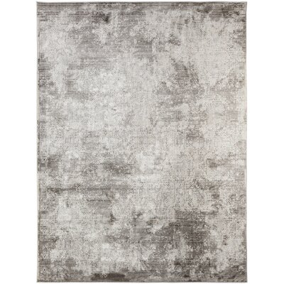 Cadence Transitional Gray Area Rug Rug Size: 710 x 1010