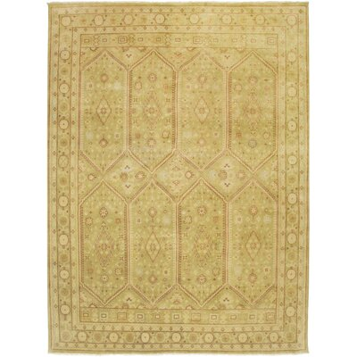 Mersin Design Green, Hand-Knotted Rug Rug Size: 8 x 10