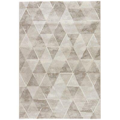 Shivani Brown/Tan/Taupe Area Rug Rug Size: 53 x 76