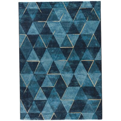Shivani Blue/Navy Area Rug Rug Size: Rectangle 710 x 1010
