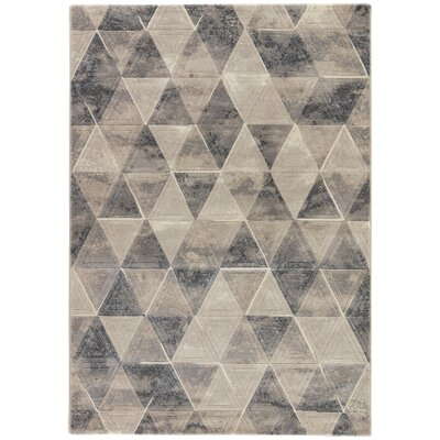Shivani Taupe/Gray/Cream Area Rug Rug Size: Rectangle 53 x 76