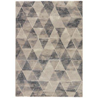 Shivani Taupe/Gray/Cream Area Rug Rug Size: 53 x 76