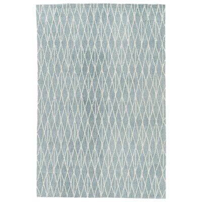 Shanice Hand-Tufted Blue/White Area Rug Rug Size: 76 x 96