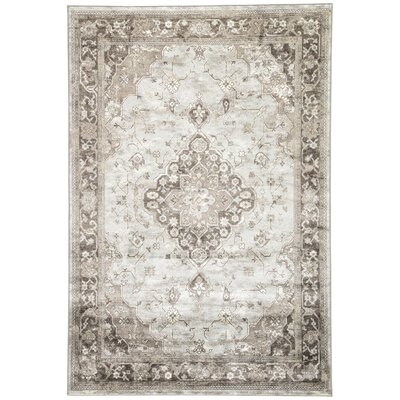 Viktor Silver/Brown Area Rug Rug Size: Rectangle 2 x 3