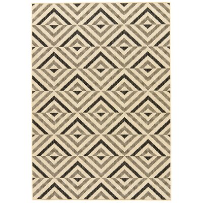 Helle Black/Beige Indoor/Outdoor Area Rug Rug Size: 76 x 96