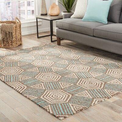 Shari Brown/Tan/Aqua Indoor/Outdoor Area Rug Rug Size: 2 x 3