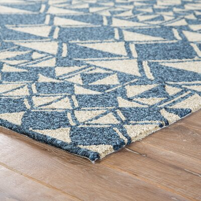 Salinas Hand Hooked Ivory/Blue Indoor/Outdoor Area Rug Rug Size: Rectangle 76 x 96