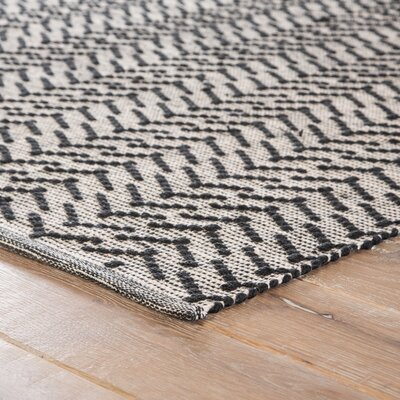 Wray Hand Woven Black Indoor/Outdoor Area Rug Rug Size: Rectangle 5 x 8