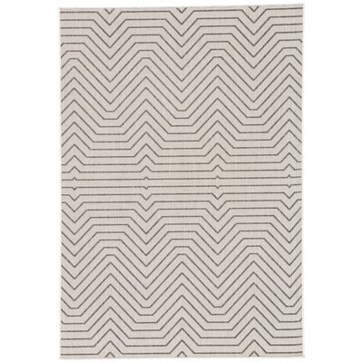 Clarion Light Gray Indoor/Outdoor Area Rug Rug Size: Rectangle 76 x 96