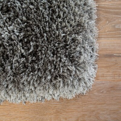 Orion Shag And Flokati Dark Gray Area Rug Rug Size: Rectangle 2 x 3