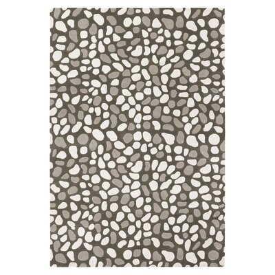 Pumice Stone Hand Tufted Gray Area Rug Rug Size: 8 x 10