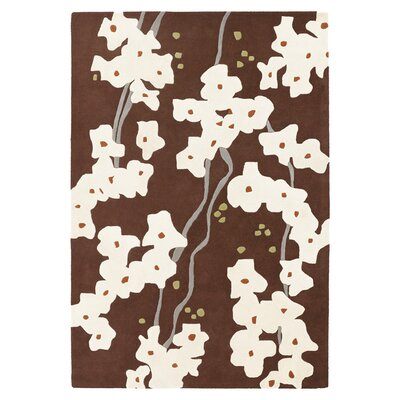 Pyrus Hand Tufted Wool Chocolate/Soy Area Rug Rug Size: 5 x 8