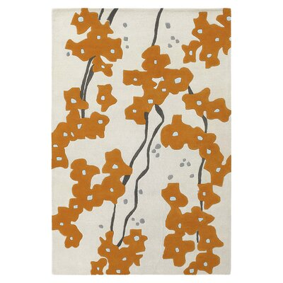 Pyrus Hand Tufted Persimmon Area Rug Rug Size: 5 x 8