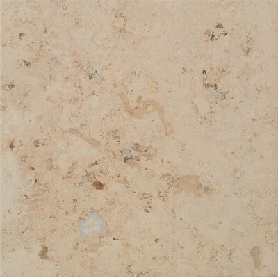 Trace 18 x 18 Porcelain Field Tile in Amber Gold