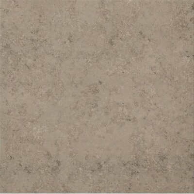 Trace 12 x 12 Porcelain Field Tile in Fossil Grey