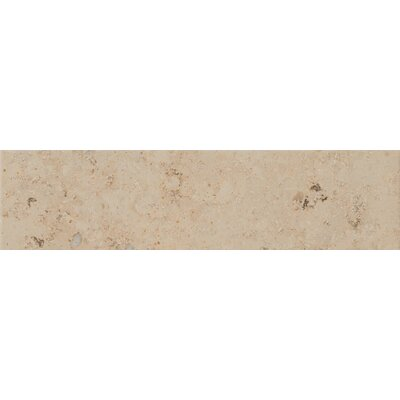 Trace 6 x 24 Porcelain Field Tile in Amber Gold