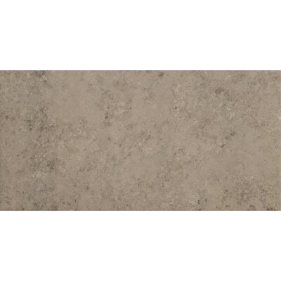 Trace 12 x 24 Porcelain Field Tile in Fossil Grey