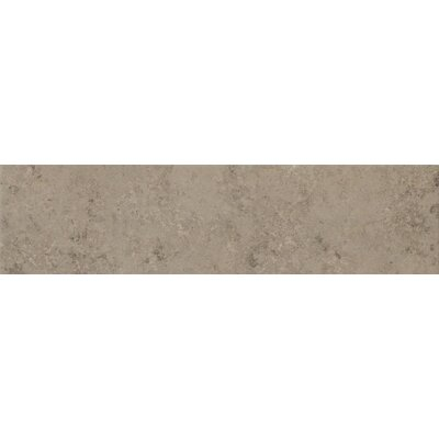 Trace 6 x 24 Porcelain Field Tile in Fossil Grey