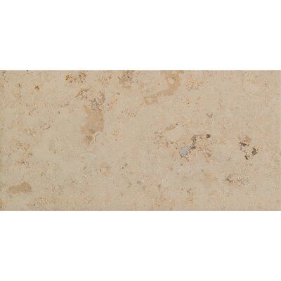 Trace 12 x 24 Porcelain Field Tile in Amber Gold