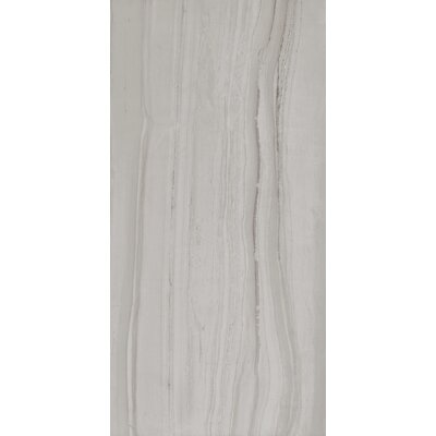 Travel 18 x 36 Porcelain Wood Look Tile in Polar White
