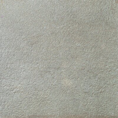 Tecnoquartz 24 x 24 Porcelain Field Tile in Gneiss