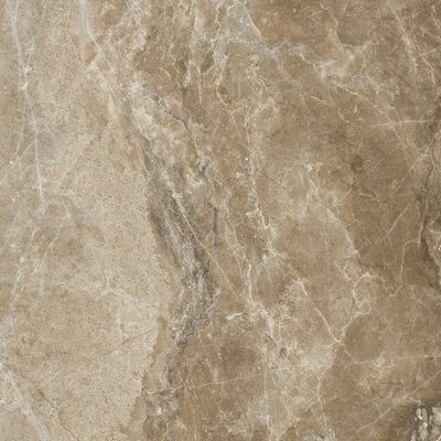 Emperor 18 x 18 Porcelain Field Tile in Napoleon