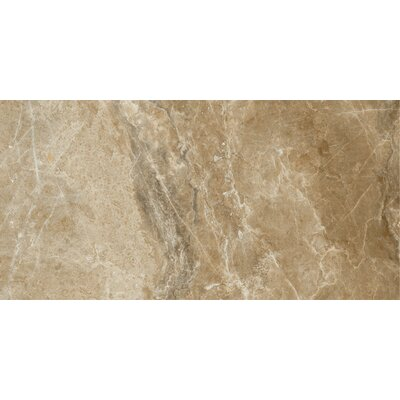 Emperor 12 x 24 Porcelain Field Tile in Napoleon