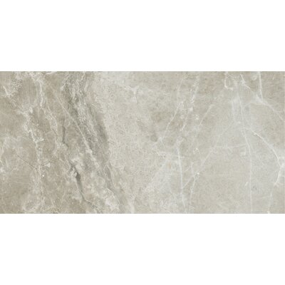 Emperor 12 x 24 Porcelain Field Tile in Alexander