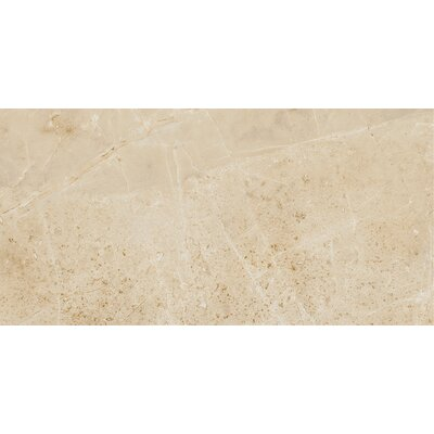 Emperor 12 x 24 Porcelain Field Tile in Caesar