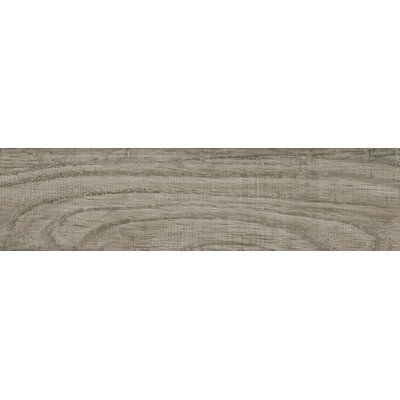 Vivaldi 6 x 24 Porcelain Wood Tile in Winter